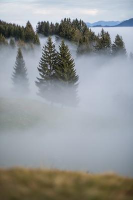 Landschaftsfotografie von Michael Groessinger